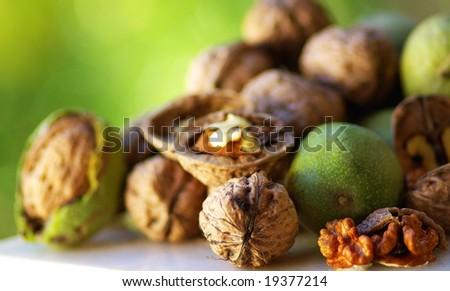 Fruit of Autumn: walnuts.