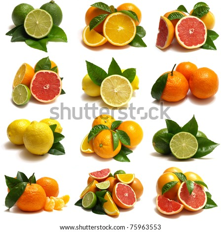 Fruit of citrus - stock photo