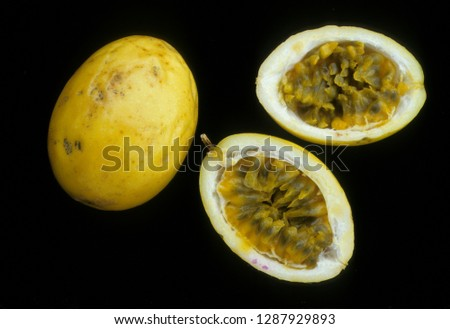 Fruit of Edible passion flower #1287929893