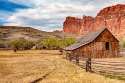 Fruita is currently the heart and administrative center of Capitol Reef National Park, Utah. Fruita was established in 1880 by a group of Mormons led by Nels Johnson, under the name