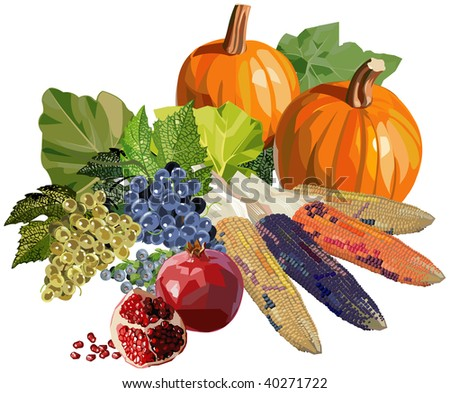 Fruits and vegetables for Thanksgiving. Vector version is available in portfolio. - stock photo