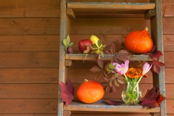 Fruits, pumpkins, autumn maple and wild grape leaves, helenium and autumn crocuses are on steps of rustic wooden ladder near wooden wall. View with copy space.