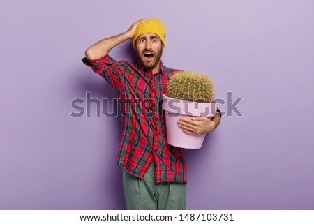 Frustrated Caucasian man keeps hand on head, holds pot with big cactus, feels embarrassed, has no idea how to care about house plants, wears yellow headgear, plaid shirt, poses indoor. Botany concept