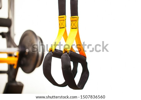 fuctional training straps in front of swedish wall with barbell on rack