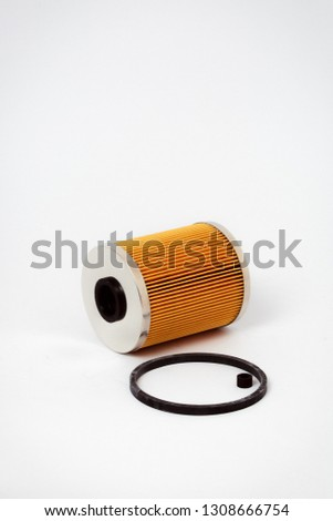 Fuel filter for gasoline engine  white background Images and