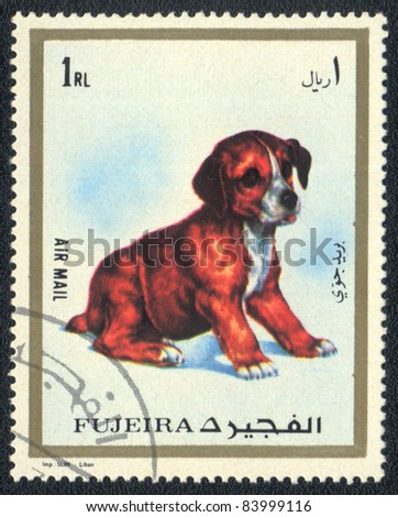 FUJAIRAH (UAE)  - CIRCA 1973: A stamp printed in  Fujairah  (UAE) and shows a Puppy, circa 1973
