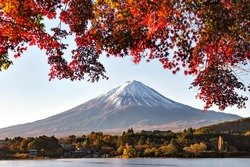 Fuji Mountain with Maple Leaves in Autumn at Kawaguchiko Lake, Japan