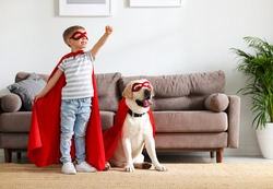 Full body of little boy in red superhero cloak and mask raising hand while playing with funny dog dressed in similar costume in living room at home