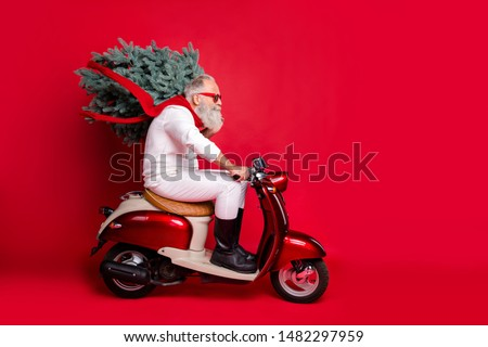 Full body profile side photo of  handsome pensioner carrying fir tree wearing eyewear eyeglasses driving bike wearing pullover pants trousers isolated over red background
