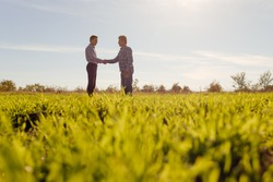 Full body side view of male farm owner and agronomist standing in middle of green grassy field and discussing professional issues in summer day in countryside