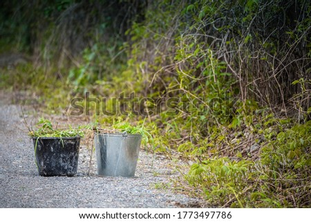 Full buckets of grass and foliage after cleaning the area on the road
