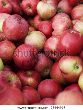 Full Frame of Red Apples
