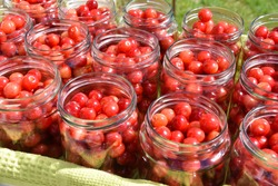 Full glass jars with red sweet and sour cherries , ready to be pasteurized for compote with sugar syrup. Traditional tasty dessert food that can be stored in a cold place  for a long time like winter.