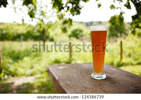 Full Glass of freshly tapped wheat beer serverd in an rustic beer garden in Germany