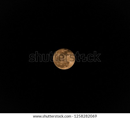 Full golden moon #1258282069