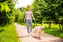 Full length body size view of attractive cheerful careful girl walking dog on street sun shining fresh air outdoors