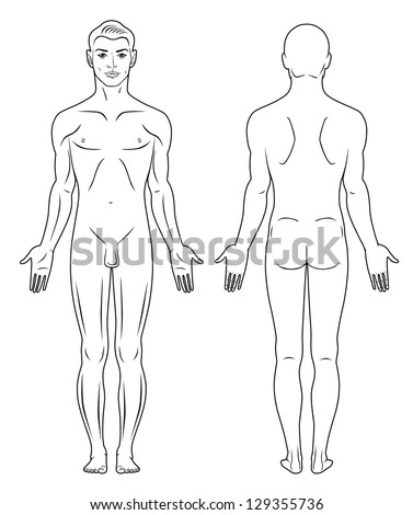 Royalty free medical record human body diagram no 192650330 full length front back view of a standing naked man you can use this ccuart Choice Image