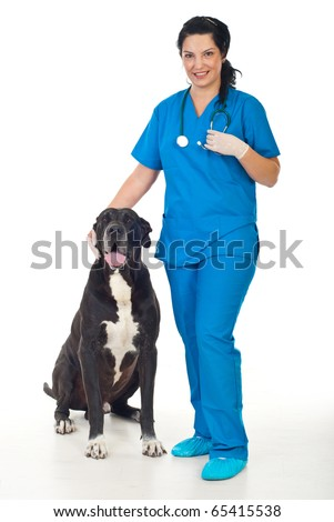 length of smiling veterinary woman with a great dane dog - stock photo