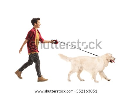 Full length portrait of a little boy walking a dog isolated on white background #552163051