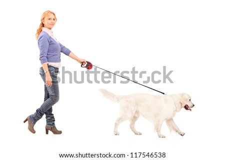 Full length portrait of a woman walking a retriever dog isolated on white background