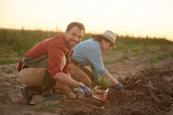 Full length portrait of two people working in field at vegetable plantation, focus on young man planting saplings in foreground and smiling at camera, copy space