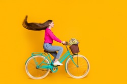 Full length profile photo of cute girl ride bike wildflowers pot wear pink sweater jeans isolated yellow color background