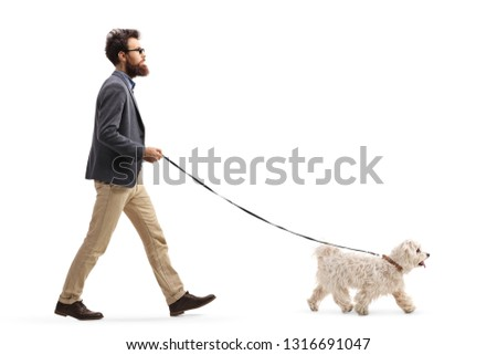 Full length profile shot of a bearded man walking a maltese poodle dog isolated on white background