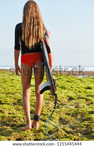 Full length shot of slim woman walks by sea with surfing board, fastened with legrope, wears wetsuit, prepares for riding, has active lifestyle. Sporty girl in swimwear, poses back to camera