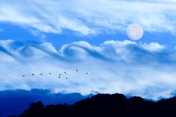 Full Moon Is Rising in the Night Sky While Birds are Silhouetted Against a Fantasy Like Cloudscape