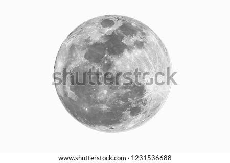 Full moon on white background.