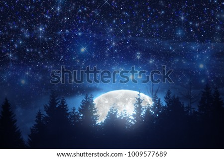 Stock Photo Full Moon rising from the horizon with tree silhouettes and stars. My astronomy work.