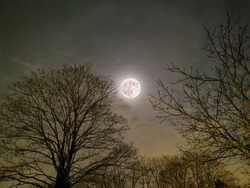 Full moon with a Halo!