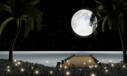 Full moon with stars in the sky. Moon light reflected on the water's surface or Sea and  Ocean. Fireflies on the grass, there are flowers on the field. romantic atmosphere of valentine. 3D Rendering