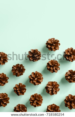 Fully opened pine cones spread in repetitive pattern on mint background, copy space top #718580254