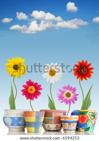 Fun daisies in colorful pots on sky background