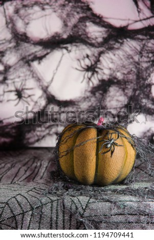 Fun Halloween Decorations of One Orange Pumpkin with Creepy Crawly on the Side and Spider Webs in Background.