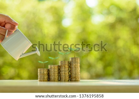 Fund investment / portfolio management for long term sustainable growth concept : Investor pours water from watering can, sprout on rows of rising coins, depicts money gain from financial investment. Stock photo ©