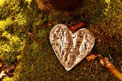 funeral Heart sympathy or wooden funeral heart shape in woodland. Natural burial grave in the forest. Heart on grass or moss. tree place of burial, cemetery and All Saints Day concepts