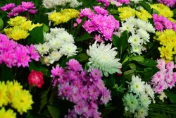 funeral is a ceremony connected with the final disposition of a corpse, such as a burial or cremation, with the attendant observances.Flowr of funeral in Thailand.