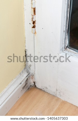 Fungus damp, and rust on the door and the wall in kitchen. Black mould on wall
