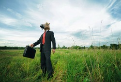 Funny businessman horse on field full of grass