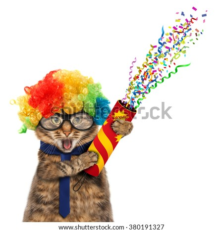 Funny cat is wearing costume clown and holding a petard.