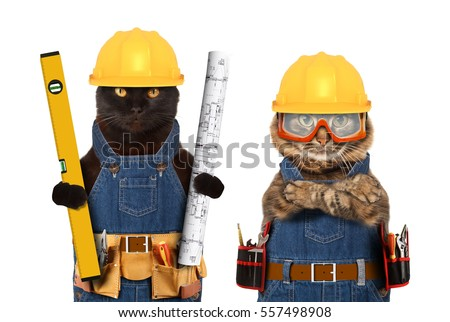 Funny cats are wearing a suit of builder and holding a builder's level and project plan. Craftsman on the white background. #557498908