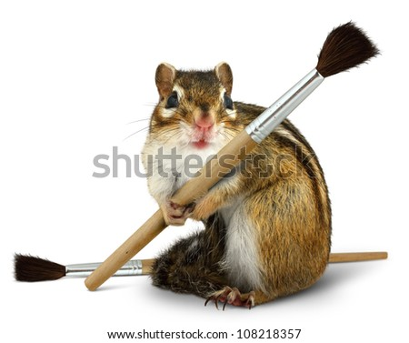Funny chipmunk hold paint brush, isolated on white background
