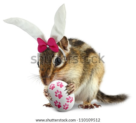 Funny chipmunk with bunny ears and hold easter egg