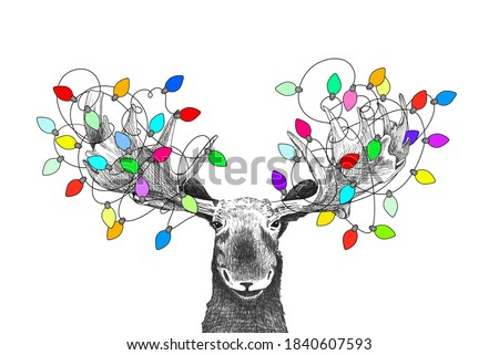 Funny Christmas moose with Christmas lights tangled in antlers, holiday party animal drawing for invitations or card, hand drawn sketch of moose Foto stock ©