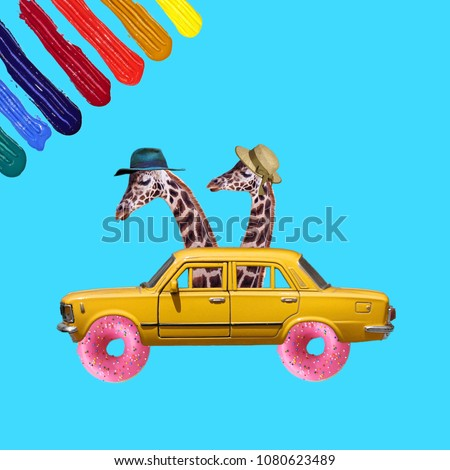 Funny Collage, Concept two giraffes in the car, summer vacations