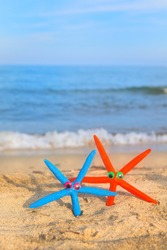 Funny colorful star fishes at the beach