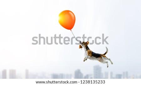 Funny dog friend. Mixed media