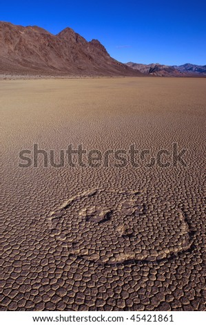Funny face in the desert of Death Valley national park, California, USA